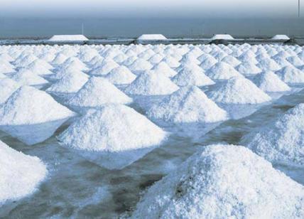 ラ・プロンタ 塩